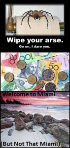 Aussie B