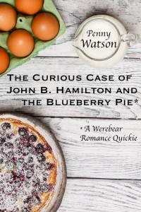 blueberry pie mock-up cover