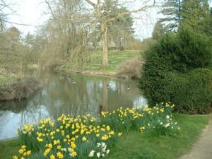 Magdalen_Fellows'_Garden